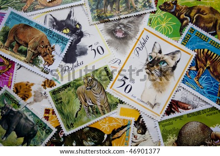 A collection of animal stamps from different countries, such as Poland, Equatorial Guinea, Cambodia, Bangladesh and others - stock photo