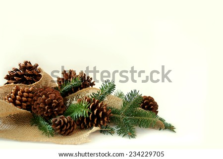 A collection of Christmas tree evergreen branches, pine cones, and burlap fabric are framing the bottom corner of a white background