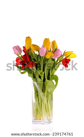 A colorful bouquet of fresh spring tulip flowers in vase isolated on white background.