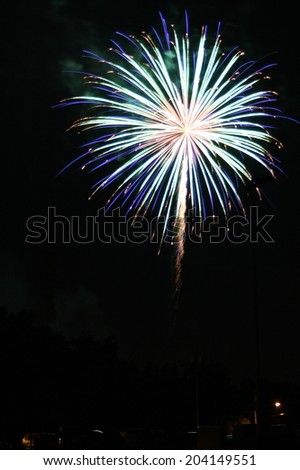 A colorful burst of fireworks