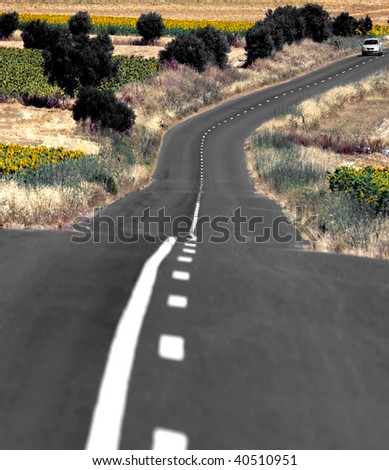 A colorful country road in a summer day. - stock photo
