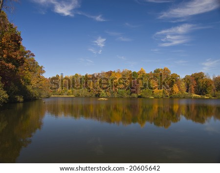 A colorful Fall day in South Carolina - stock photo