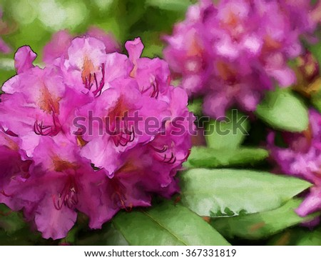A colorful pink rhododendron flowering bush transformed into a painting - stock photo