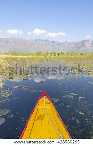 A colorful shikara ride on Dal Lake, Kashmir