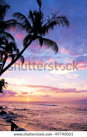A colorful tropical sunset at Kaanapali Beach in Maui with a silhouette of a palm tree in the foreground - stock photo