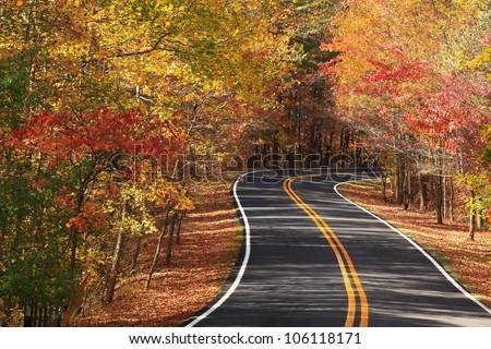 A colourful curving autumn road - stock photo