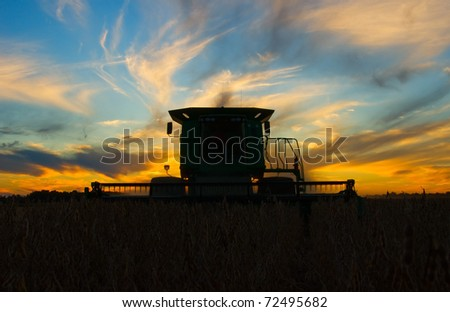 A combine cutting soybeans in a beautiful sunset - stock photo