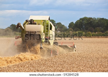 a combine harvester collecting wheat from a field