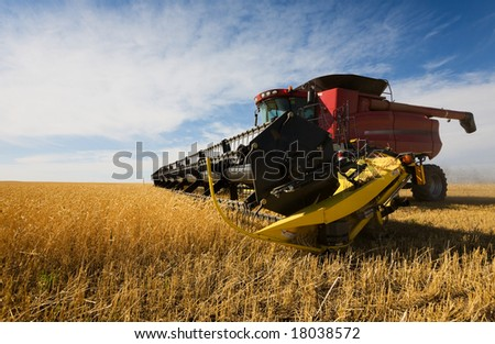A  combine harvester working a wheat field - stock photo