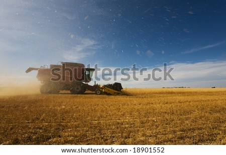 A combine harvester working with debris and dust flying - stock photo