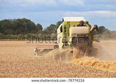 a combine harvestor collecting wheat from a field - stock photo