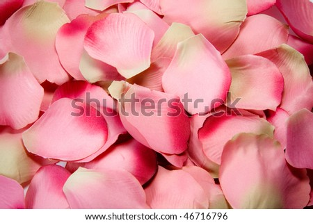 A composition of rose petals (cloth) - stock photo
