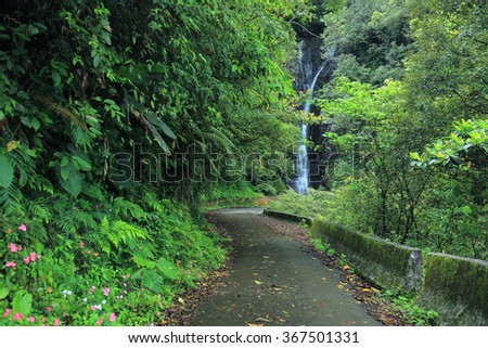 A cool refreshing waterfall pouring from a cliff at the end of a mountain path hidden in a mysterious forest of lush greenery ~ Beautiful jungle and river scenery of Taiwan in springtime - stock photo