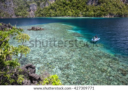 """A coral reef fringes limestone islands in Raja Ampat, Indonesia. This beautiful region is home to more marine species than anywhere else on Earth and is known as the """"heart of the Coral Triangle."""" - stock photo"""