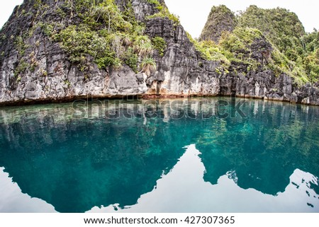 """A coral reef fringes rugged limestone islands in Raja Ampat, Indonesia. This remote region is home to more marine species than anywhere else on Earth and is known as the """"heart of the Coral Triangle."""" - stock photo"""