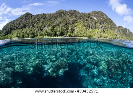 A coral reef grows near a remote limestone island in Raja Ampat, Indonesia. This beautiful region is part of the Coral Triangle and is home to an extraordinary array of marine life. - stock photo