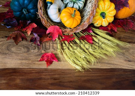 A cornucopia with squash, gourds, pumpkins, wheat and leaves on an old antique harvest  table.  Room for copy space.  - stock photo