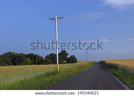 a country road on a beautiful summer day with wheat fields on both sides