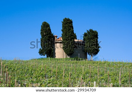 A country scene from Italy (The hill, the vineyard, the church) - stock photo