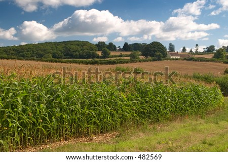 A countryside scene taken in the South West of England - stock photo