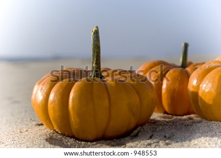 A couple mini pumpkins sitting on the sand at the beach.