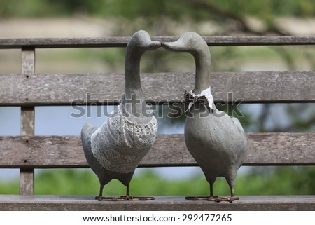 A Couple of Duck on wooden planks.