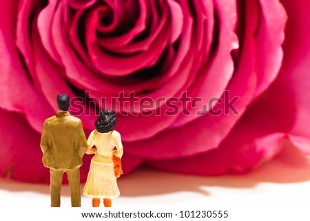 a couple of figurine is standing in front of a close-up rose - stock photo