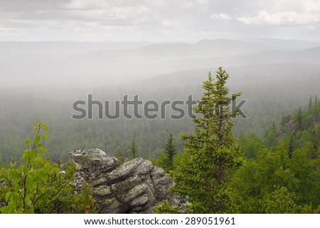 A couple of firs grow on the edge of the rock under a heavy rain with wind in summer on backdrop of forest in the South Urals mountains, Russia - stock photo