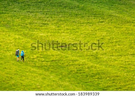a couple of friends in tourist clothes with backpacks and trekking sticks go on a green hill, and looking into the distance