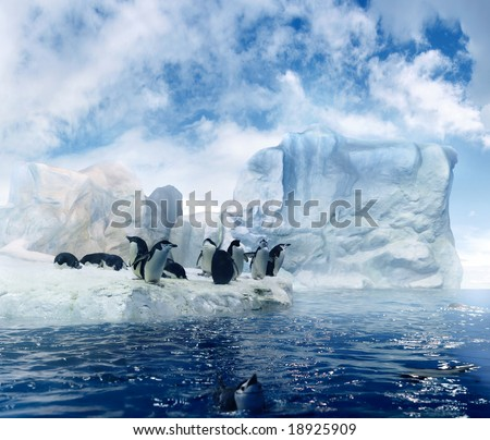 a couple of penguins sitting on melting ice floes in the antarctic region - stock photo