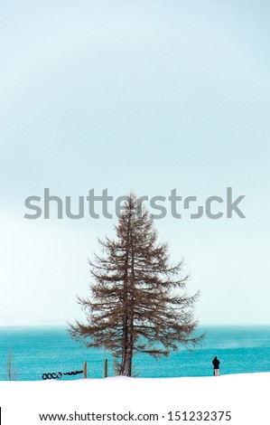A couple standing near a blue lake in winter snowfall - stock photo