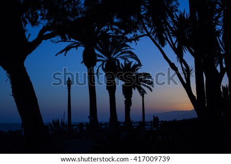 A couple standing on a promenade in a late evening surrounded with palm trees - stock photo