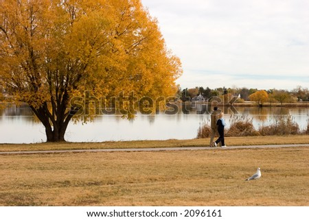 A couple takes a relaxing stroll around the lake during fall's brilliance which is reflected in the calm lake. - stock photo