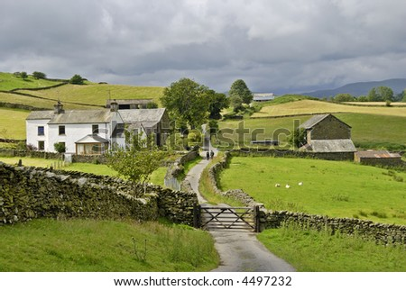 A couple walking along a country lane as it passes through a farm in the English lake District