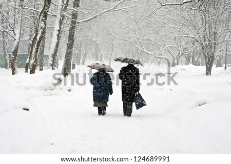 A couple walking in a winter park - stock photo