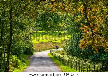 A couple walking through early Auumn woodland - stock photo