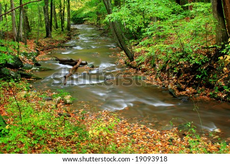 A creek deep in the forest during the start of fall colors. - stock photo