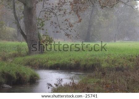 A creek in the rain in kentucky. - stock photo