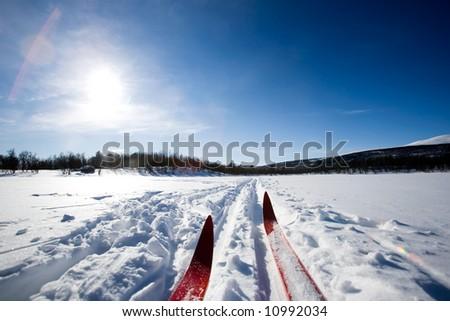A cross country ski detail - stock photo