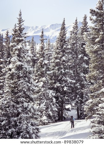 A cross-country skier enjoys a powder day in the Colorado wilderness