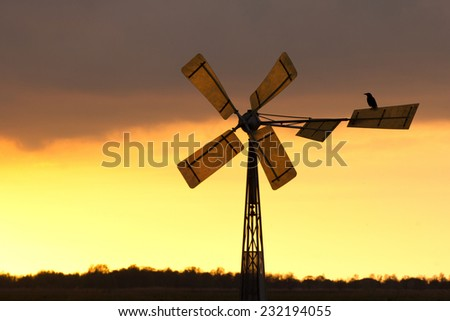 A crow and a windmill at sunset - stock photo