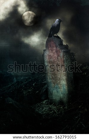 A crow on a gravestone in a horror or Halloween setting - stock photo