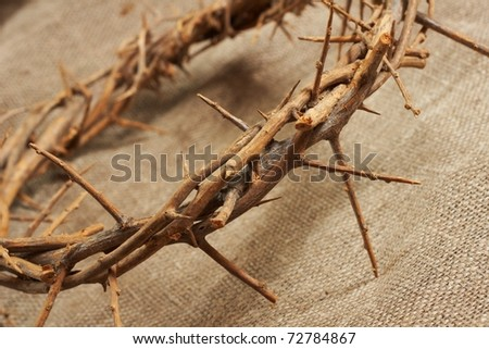 a crown of thorns on canvas  background - stock photo