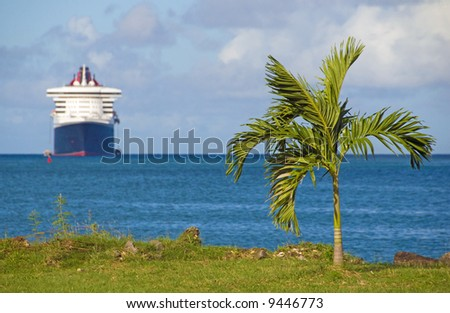 A cruise ship in the background carries risk for the palm tree on the shoreline - stock photo
