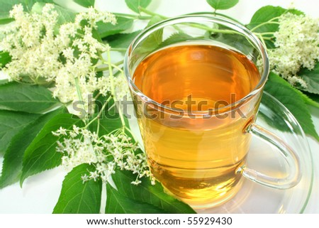 a cup of Elderflower tea with fresh flowers