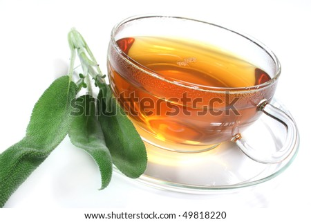 a cup of herbal tea with fresh herbs