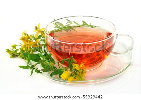 a cup of St. John's Wort Tea with fresh flowers - stock photo