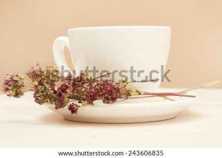A cup of tea A cup of organic thyme tea (thymus serpyllum) - stock photo