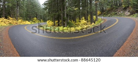A curve in the road on the McKenzie Highway in Oregon on a foggy Autumn morning.  6 image stitch