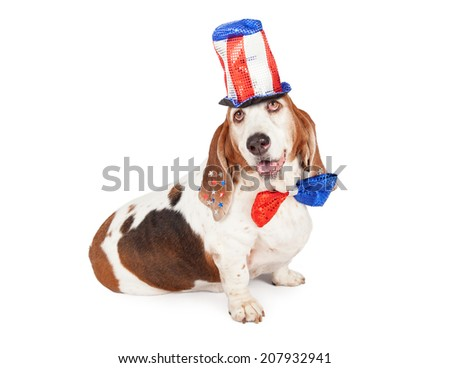 A cute and happy Basset Hound dog wearing a red, white and blue tall sequin hat and bow tie for the 4th of July American holiday